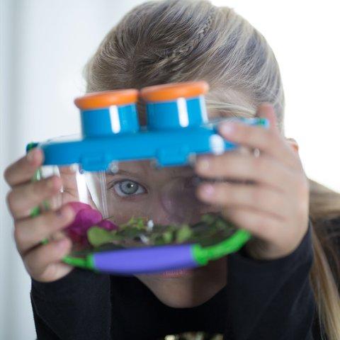 Обучающая игрушка Educational Insights серии Геосафари: Мир насекомых Превью 2